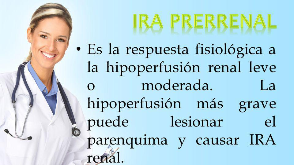 1.Enfermedades de los grandes vasos 2.Enfermedades de la microcirculación renal y los glomérulos 3.IRA isquémica y nefrotóxica 4.Enfermedades tubulo- intersticiales