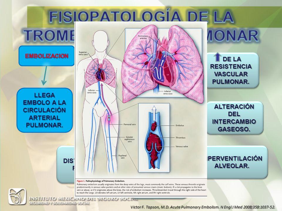 POSIBILIDAD DIAGNOSTICA DISNEADISNEA DOLOR PLEURITICODOLOR PLEURITICO HEMOPTISISHEMOPTISIS PALPITACIONESPALPITACIONES DOLOR ANGINOSDOLOR ANGINOS SINCOPESINCOPE TAQUIPNEATAQUIPNEA TAQUICARDIATAQUICARDIA SIGNOS DE TROMBOSIS VENOSA PROFUNDASIGNOS DE TROMBOSIS VENOSA PROFUNDA TEMPERATURA MAYOR DE 38 GRADOSTEMPERATURA MAYOR DE 38 GRADOS Victor F.