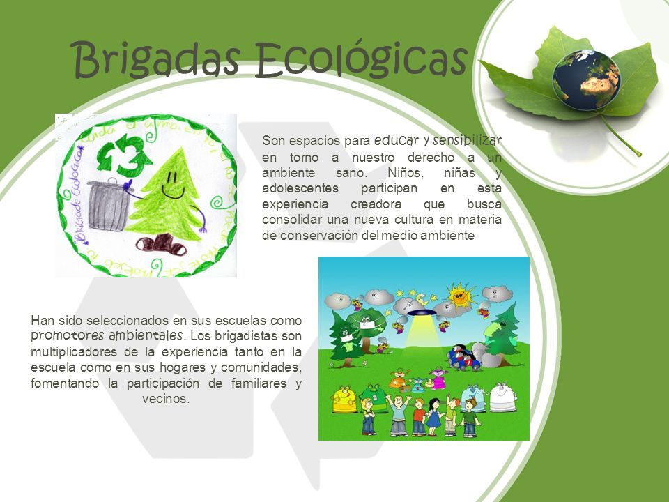 Brigadas Ecológicas Son espacios para educar y sensibilizar en torno a nuestro derecho a un ambiente sano. Niños, niñas y adolescentes participan en e