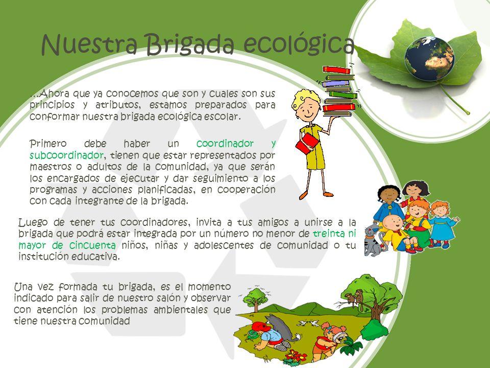 Nuestra Brigada ecológica …Ahora que ya conocemos que son y cuales son sus principios y atributos, estamos preparados para conformar nuestra brigada e