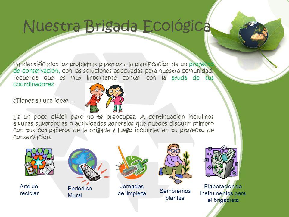 Nuestra Brigada Ecológica Ya identificados los problemas pasemos a la planificación de un proyecto de conservación, con las soluciones adecuadas para