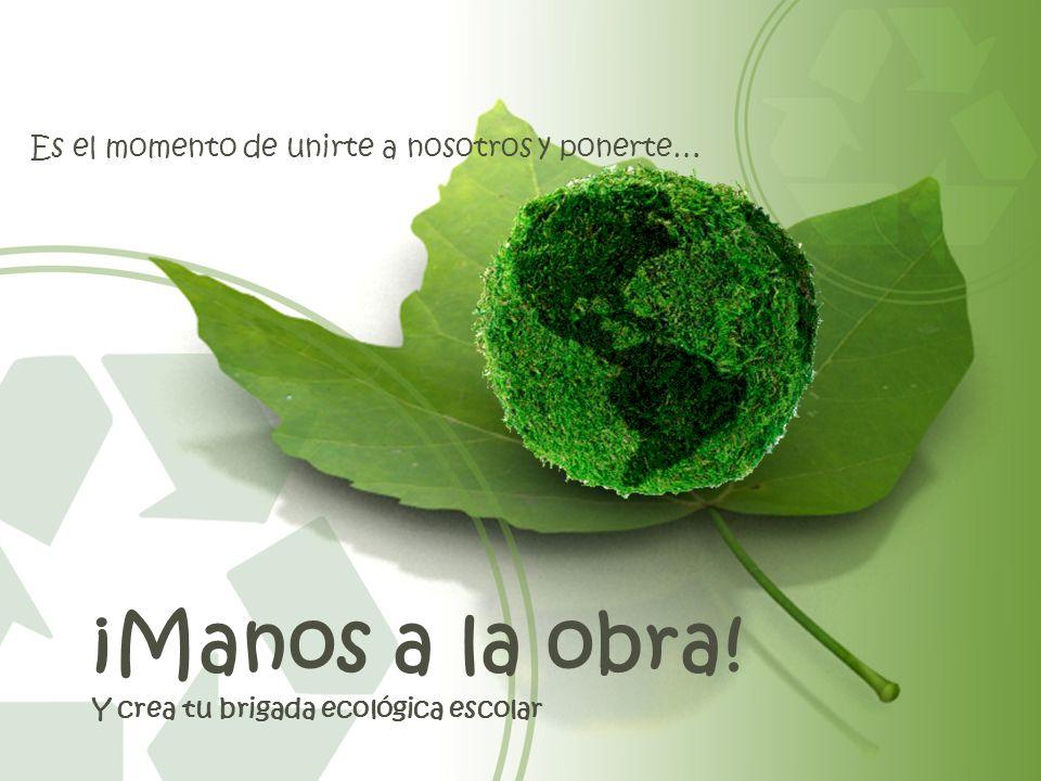 ¡Manos a la obra! Y crea tu brigada ecológica escolar Es el momento de unirte a nosotros y ponerte…