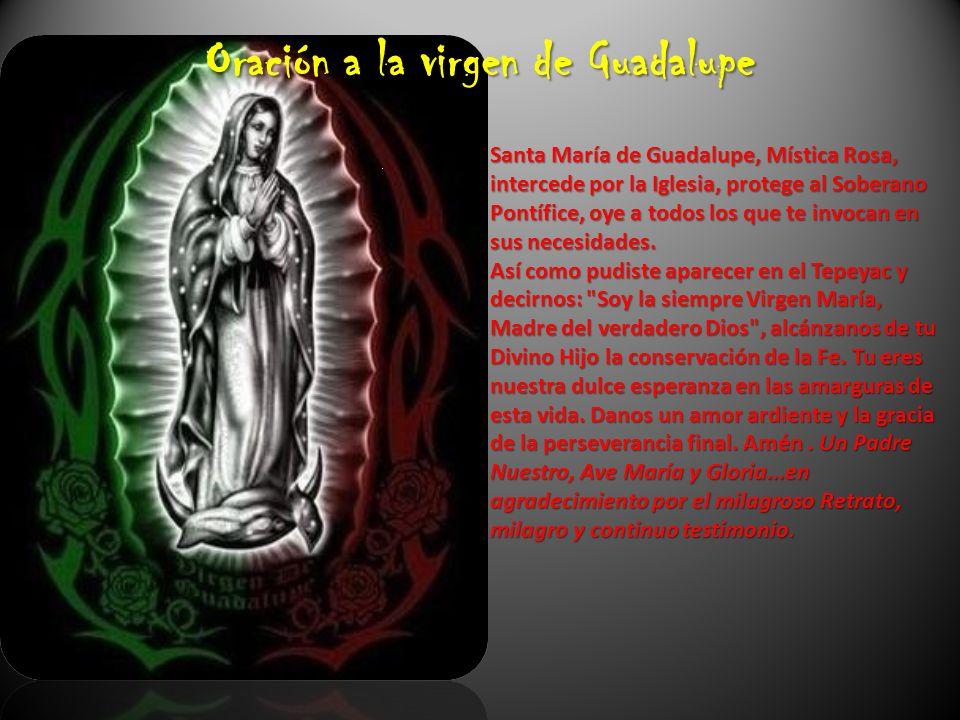 Oración a la virgen de Guadalupe Santa María de Guadalupe, Mística Rosa, intercede por la Iglesia, protege al Soberano Pontífice, oye a todos los que te invocan en sus necesidades.
