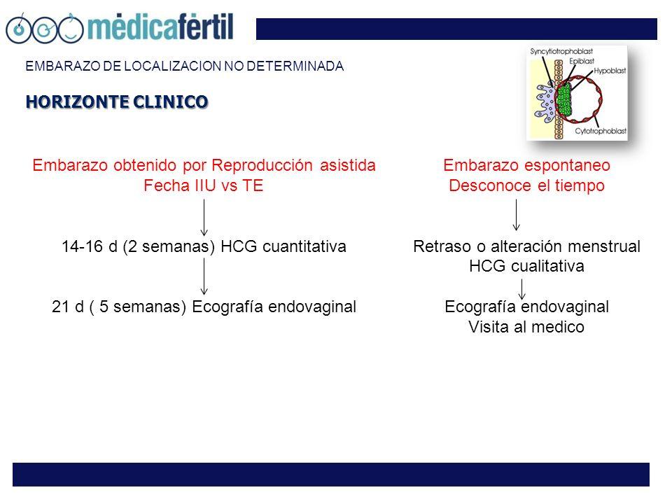 EMBARAZO DE LOCALIZACION NO DETERMINADA Embarazo obtenido por Reproducción asistida Fecha IIU vs TE 14-16 d (2 semanas) HCG cuantitativa 21 d ( 5 sema