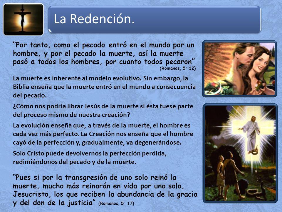 La Redención.La muerte es inherente al modelo evolutivo.