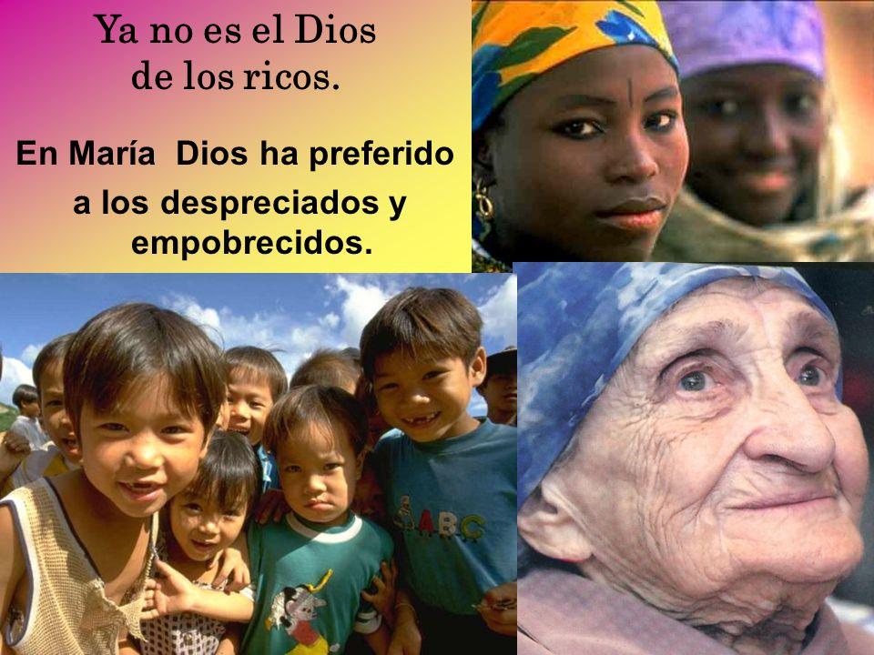 Contigo cantamos, María, exultantes de gratuidad, porque Él se fija en los insignificantes; porque Él es siempre fiel.
