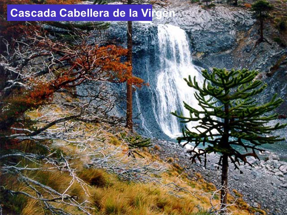 El Bolsón en otoño (Río Negro) Parque Los Arrayanes.Bariloche.
