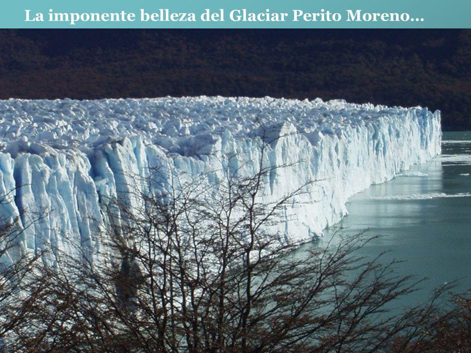 En cualquier época del año Bariloche luce sus bellos Paisajes… CERRO CATEDRAL