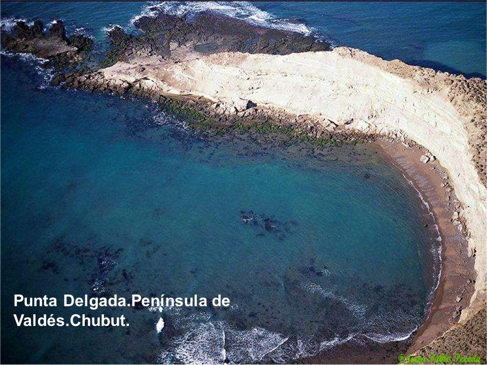 Punta Delgada.Península de Valdés.Chubut.