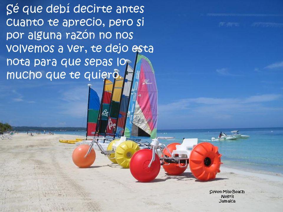 Blue Bay Beach KiwengwaZanzibar l).. Nunca te juzga m).. Te ofrece su apoyo