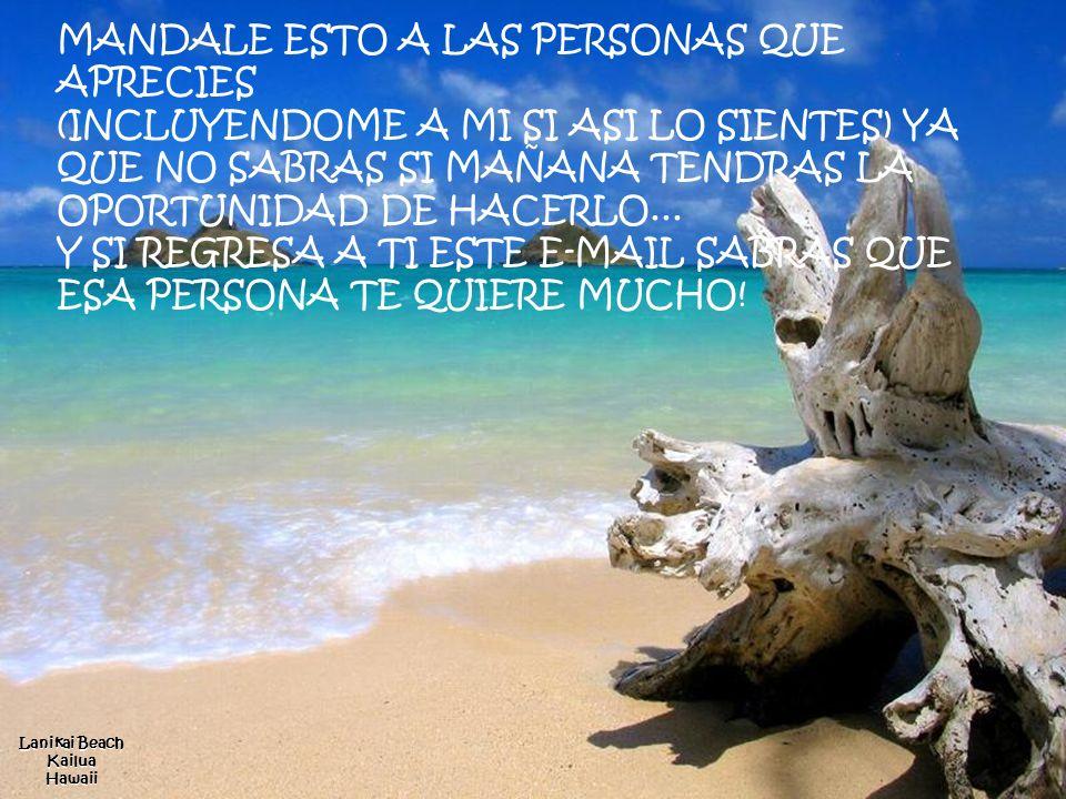 BarosMaldives No olvides nunca el valor de la amistad