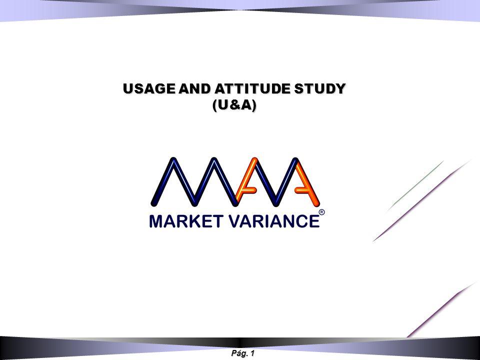 Pág. 1 USAGE AND ATTITUDE STUDY (U&A)