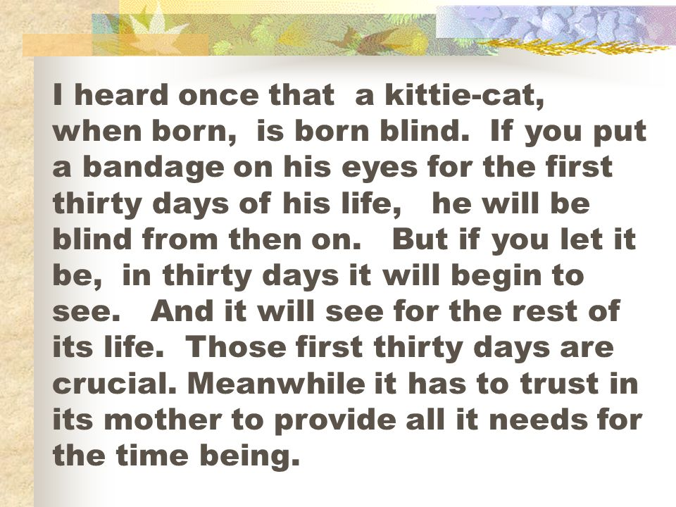 I heard once that a kittie-cat, when born, is born blind. If you put a bandage on his eyes for the first thirty days of his life, he will be blind fro