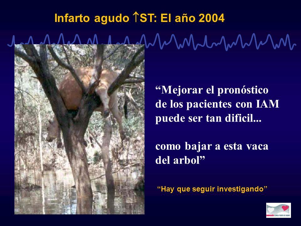Infarto agudo ST: El año 2004 Mejorar el pronóstico de los pacientes con IAM puede ser tan dificil... como bajar a esta vaca del arbol Hay que seguir