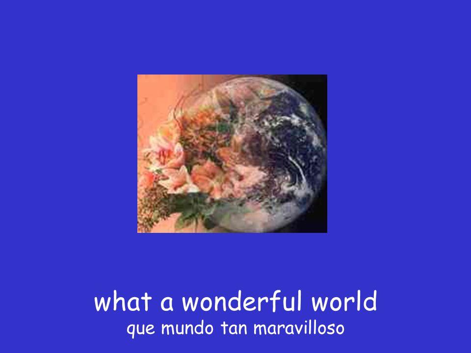 what a wonderful world que mundo tan maravilloso