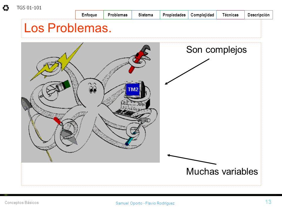 TGS 01-101 Samuel Oporto - Flavio Rodríguez 13 EnfoqueProblemasSistemaPropiedadesTécnicasDescripción Conceptos Básicos Complejidad Los Problemas. Son