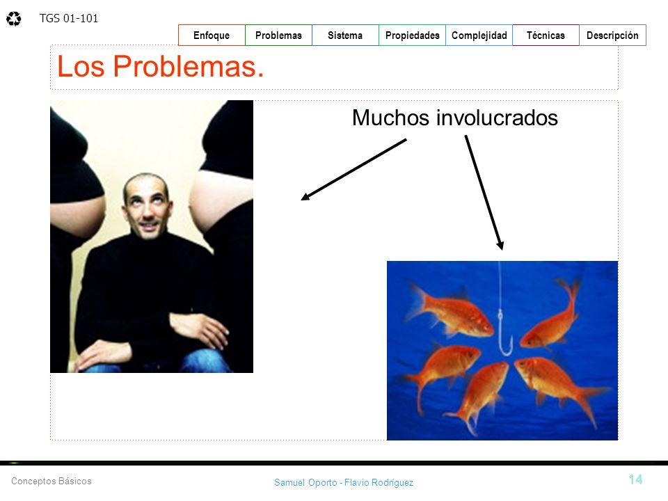 TGS 01-101 Samuel Oporto - Flavio Rodríguez 14 EnfoqueProblemasSistemaPropiedadesTécnicasDescripción Conceptos Básicos Complejidad Los Problemas. Much