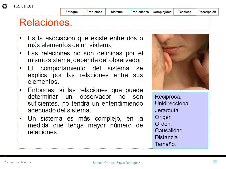 TGS 01-101 Samuel Oporto - Flavio Rodríguez 29 EnfoqueProblemasSistemaPropiedadesTécnicasDescripción Conceptos Básicos Complejidad Relaciones. Es la a