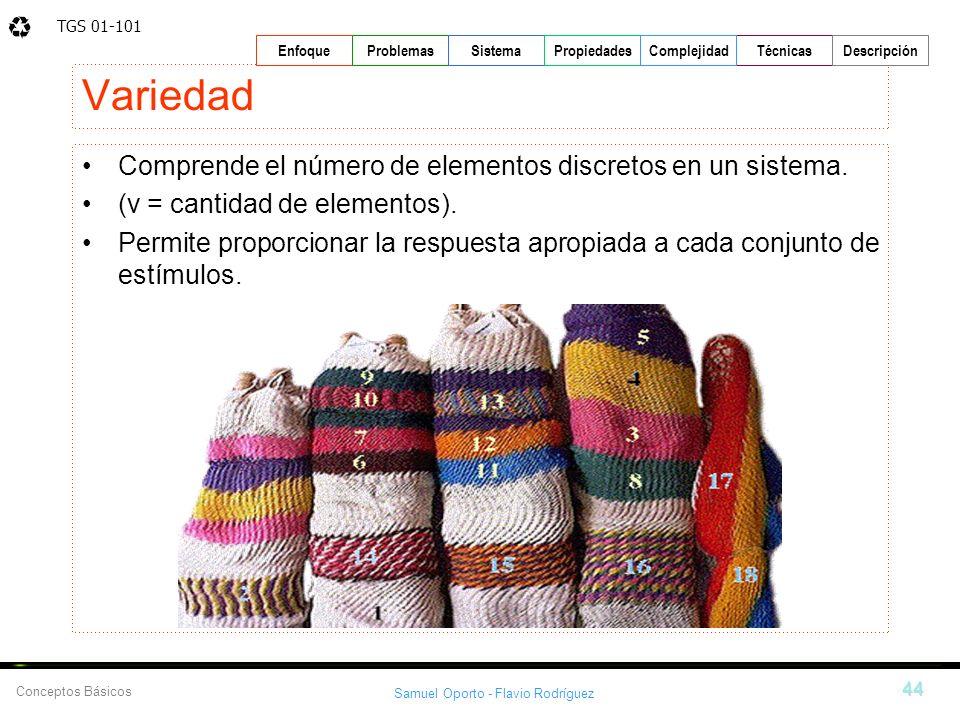 TGS 01-101 Samuel Oporto - Flavio Rodríguez 44 EnfoqueProblemasSistemaPropiedadesTécnicasDescripción Conceptos Básicos Complejidad Variedad Comprende