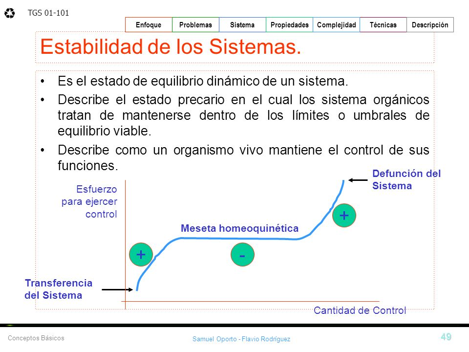 TGS 01-101 Samuel Oporto - Flavio Rodríguez 49 EnfoqueProblemasSistemaPropiedadesTécnicasDescripción Conceptos Básicos Complejidad Estabilidad de los