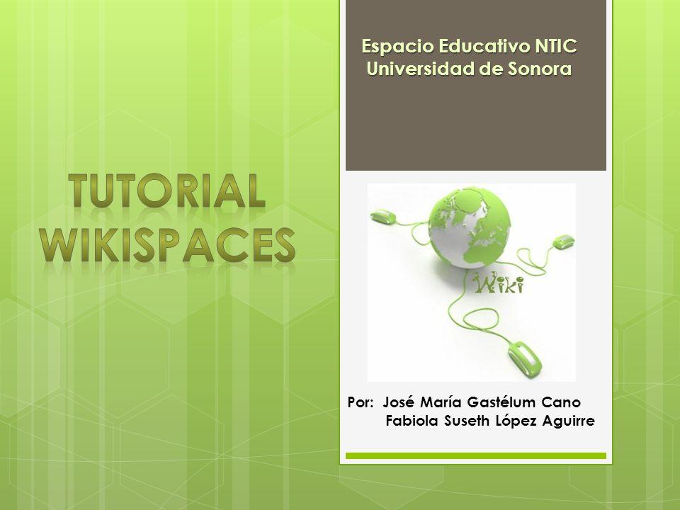 Por: José María Gastélum Cano Fabiola Suseth López Aguirre Espacio Educativo NTIC Universidad de Sonora