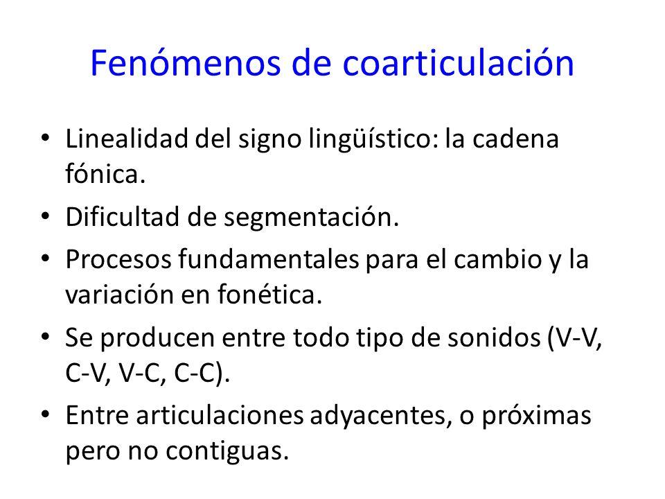 Fenómenos de coarticulación Linealidad del signo lingüístico: la cadena fónica. Dificultad de segmentación. Procesos fundamentales para el cambio y la