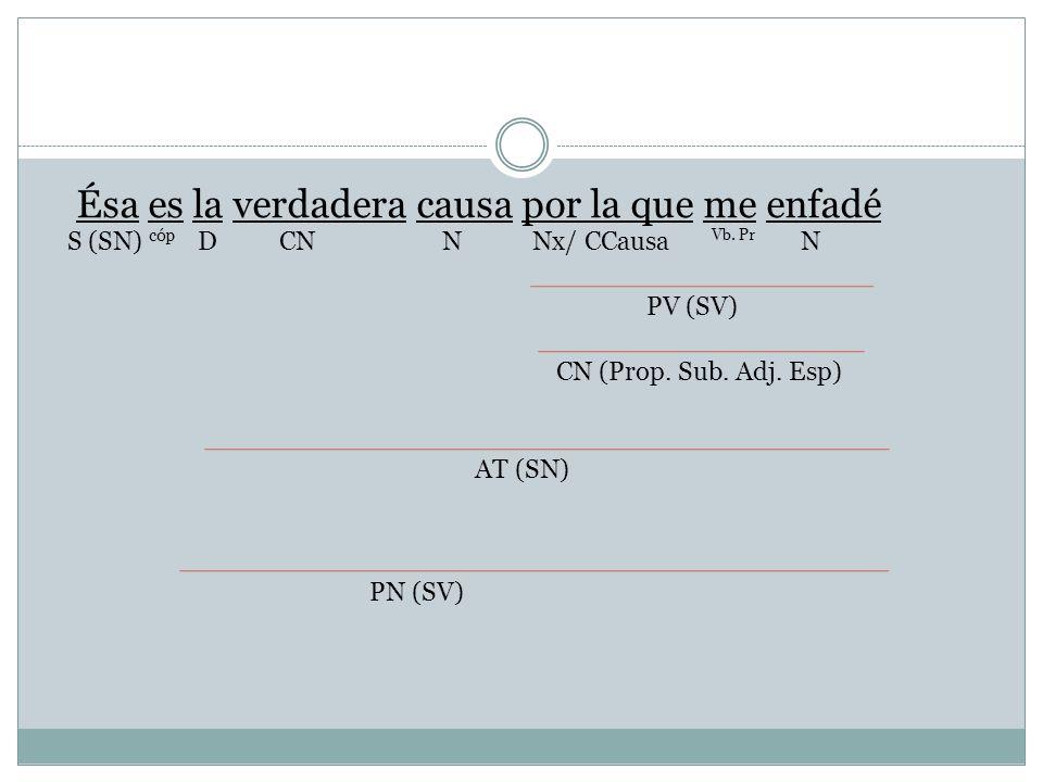 Ésa es la verdadera causa por la que me enfadé Nx/ CCausaNDCN cóp S (SN)N Vb. Pr PV (SV) CN (Prop. Sub. Adj. Esp) AT (SN) PN (SV)