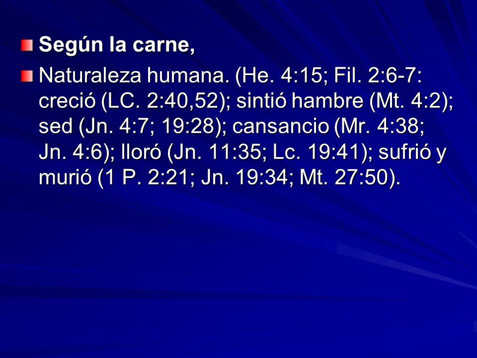 Según la carne, Naturaleza humana. (He. 4:15; Fil. 2:6-7: creció (LC. 2:40,52); sintió hambre (Mt. 4:2); sed (Jn. 4:7; 19:28); cansancio (Mr. 4:38; Jn