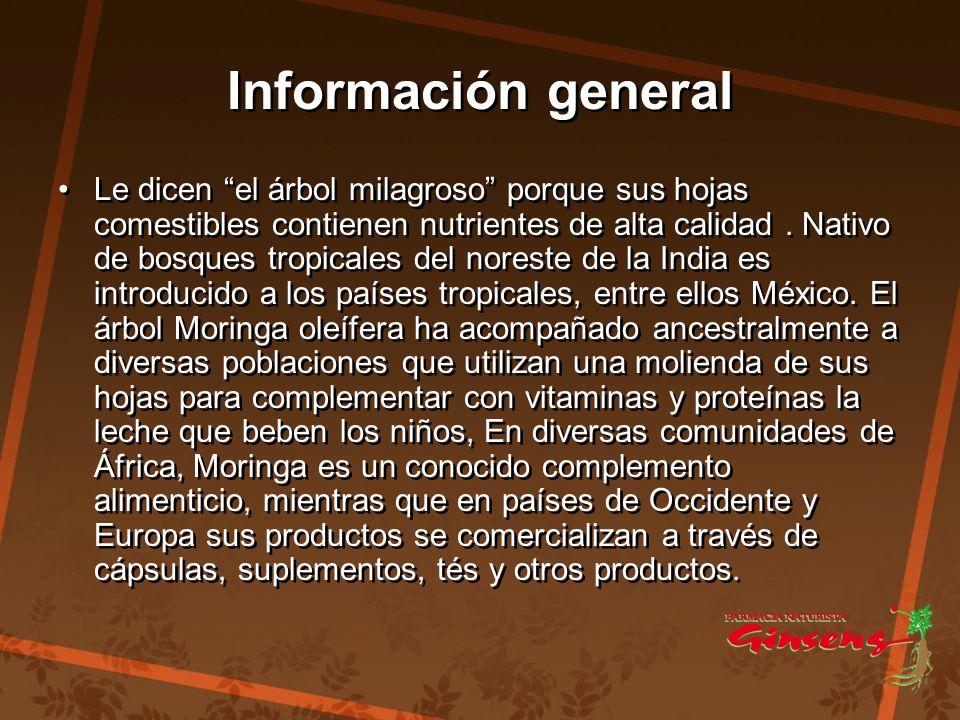 Información general Información general Le dicen el árbol milagroso porque sus hojas comestibles contienen nutrientes de alta calidad. Nativo de bosqu