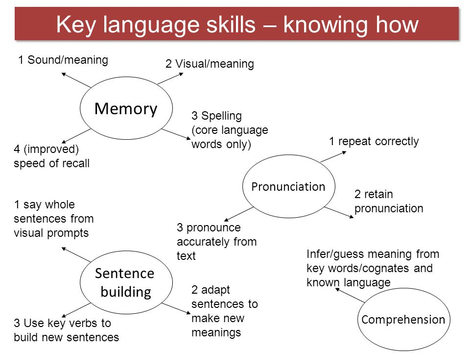 Grammar: skill or knowledge? Introduction