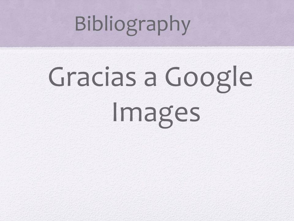 Bibliography Gracias a Google Images