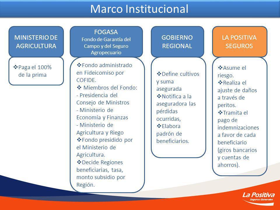 Marco Institucional MINISTERIO DE AGRICULTURA FOGASA Fondo de Garantía del Campo y del Seguro Agropecuario GOBIERNO REGIONAL LA POSITIVA SEGUROS Paga el 100% de la prima Fondo administrado en Fideicomiso por COFIDE.