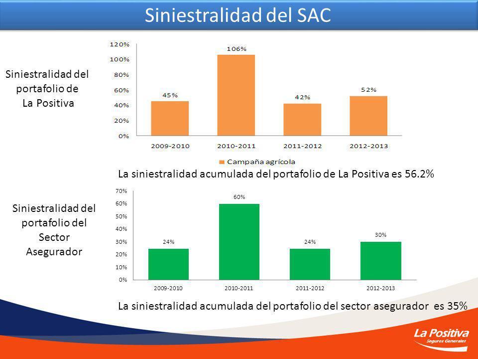 Siniestralidad del SAC La siniestralidad acumulada del portafolio de La Positiva es 56.2% La siniestralidad acumulada del portafolio del sector asegurador es 35% Siniestralidad del portafolio de La Positiva Siniestralidad del portafolio del Sector Asegurador