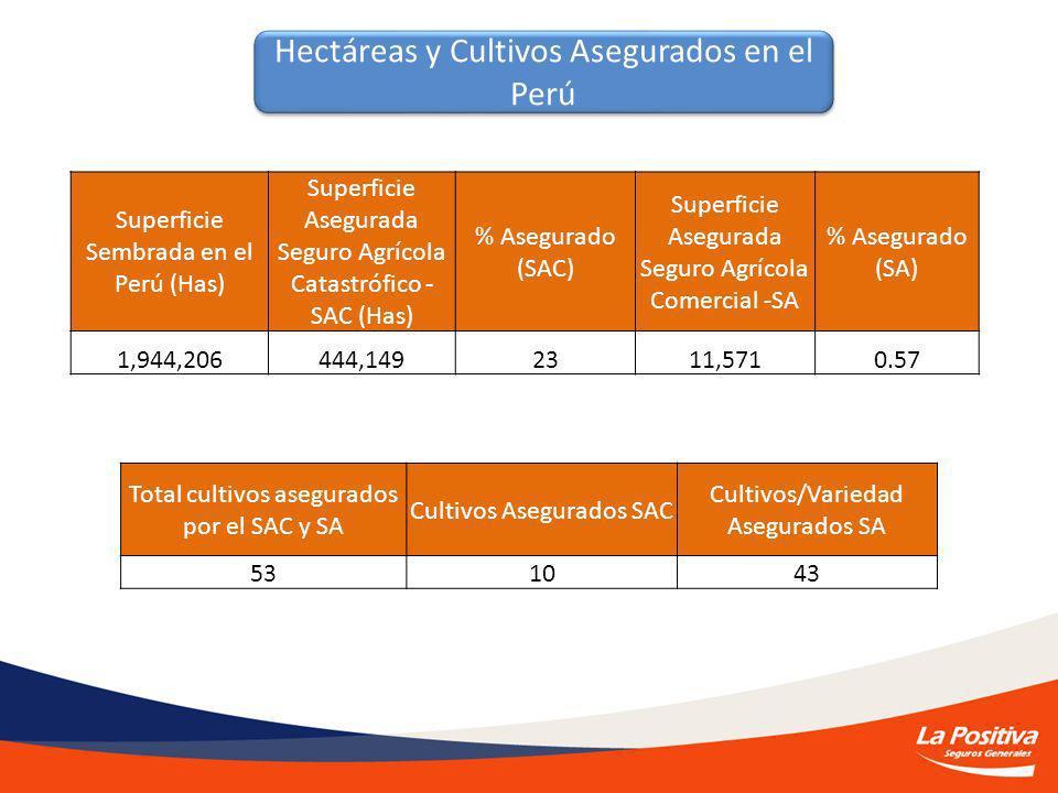 Hectáreas y Cultivos Asegurados en el Perú Superficie Sembrada en el Perú (Has) Superficie Asegurada Seguro Agrícola Catastrófico - SAC (Has) % Asegurado (SAC) Superficie Asegurada Seguro Agrícola Comercial -SA % Asegurado (SA) 1,944,206444,1492311,5710.57 Total cultivos asegurados por el SAC y SA Cultivos Asegurados SAC Cultivos/Variedad Asegurados SA 531043
