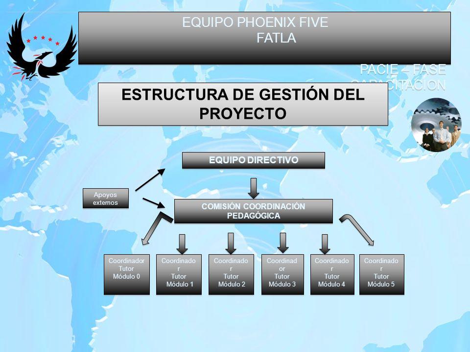 EQUIPO PHOENIX FIVE FATLA PACIE – FASE CAPACITACION EQUIPO PHOENIX FIVE FATLA PACIE – FASE CAPACITACION ESTRUCTURA DE GESTIÓN DEL PROYECTO EQUIPO DIRE
