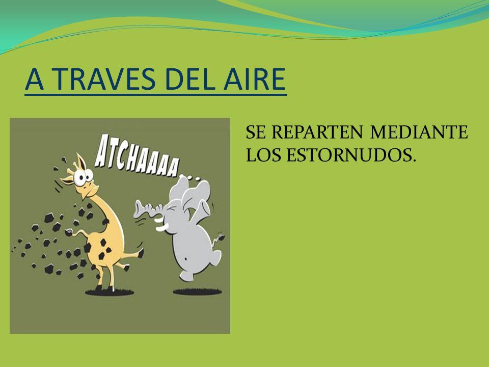 A TRAVES DEL AIRE SE REPARTEN MEDIANTE LOS ESTORNUDOS.