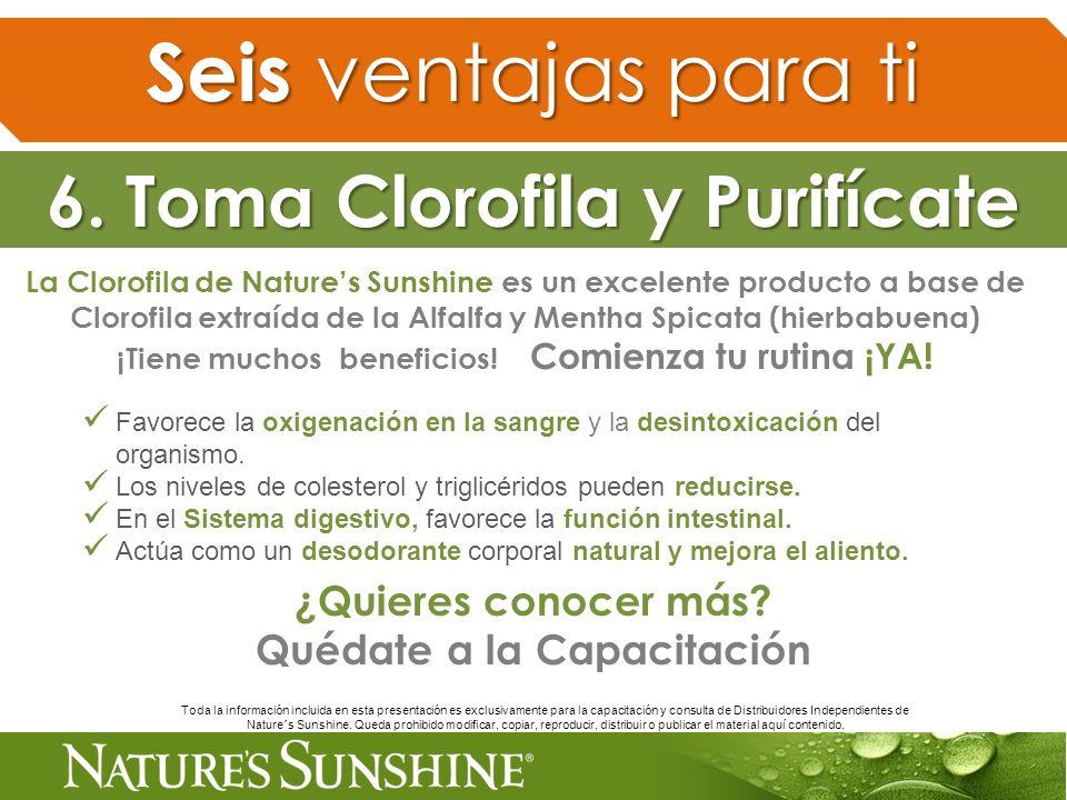 La Clorofila de Natures Sunshine es un excelente producto a base de Clorofila extraída de la Alfalfa y Mentha Spicata (hierbabuena) ¡Tiene muchos bene