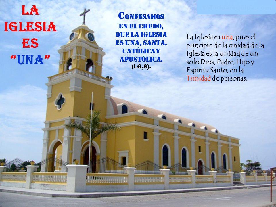 El Pueblo de Dios: se alimenta se alimenta con la Palabra y los Santos Sacramentos (especialmente la Eucaristía), anuncia anuncia el Reino de Dios imi
