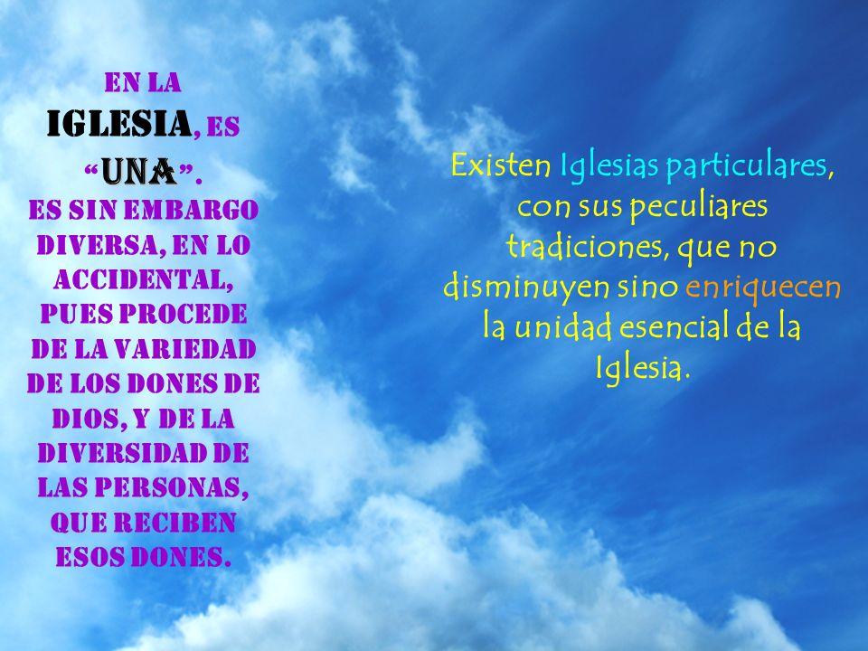 La Iglesia es peregrina, siempre caminando hacia la Gloria del Cielo, como Asamblea de todos los redimidos en la Tierra (Ap 14,4)..