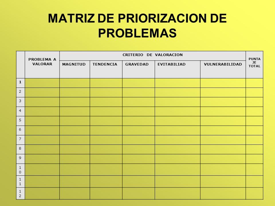 MATRIZ DE PRIORIZACION DE PROBLEMAS PROBLEMA A VALORAR CRITERIO DE VALORACION PUNTA JE TOTAL MAGNITUDTENDENCIAGRAVEDADEVITABILIADVULNERABILIDAD 1 2 3