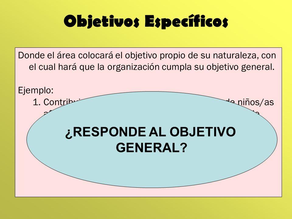 Objetivos Específicos Donde el área colocará el objetivo propio de su naturaleza, con el cual hará que la organización cumpla su objetivo general. Eje