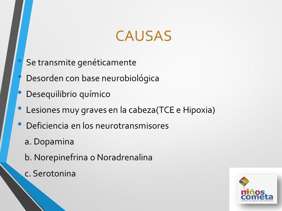CAUSAS Se transmite genéticamente Desorden con base neurobiológica Desequilibrio químico Lesiones muy graves en la cabeza(TCE e Hipoxia) Deficiencia e