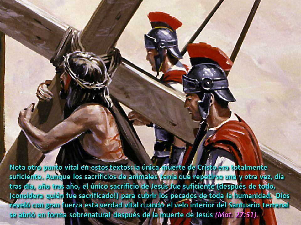 Mira el mundo a tu alrededor; mira el daño que ha causado el pecado: el dolor, la pérdida, el temor, la desesperanza.