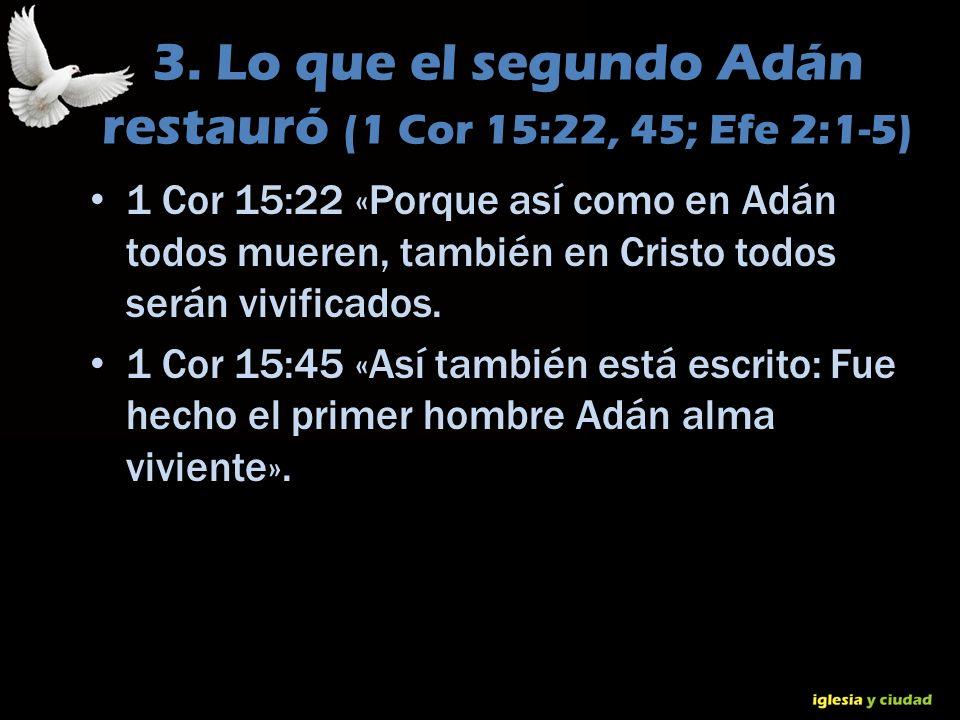 © Dr. Jerry Brown 2010 3. Lo que el segundo Adán restauró (1 Cor 15:22, 45; Efe 2:1-5) 1 Cor 15:22 «Porque así como en Adán todos mueren, también en C