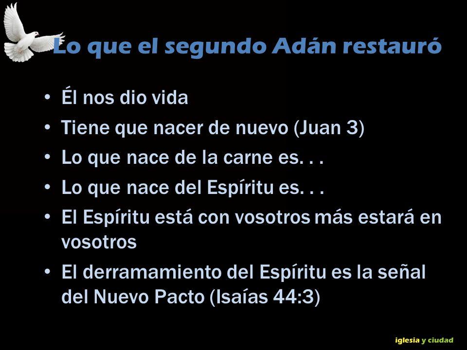 © Dr. Jerry Brown 2010 Lo que el segundo Adán restauró Él nos dio vida Tiene que nacer de nuevo (Juan 3) Lo que nace de la carne es... Lo que nace del