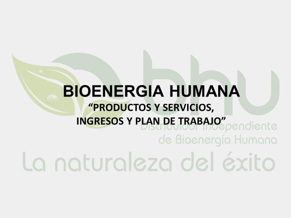BIOENERGIA HUMANA PRODUCTOS Y SERVICIOS, INGRESOS Y PLAN DE TRABAJO