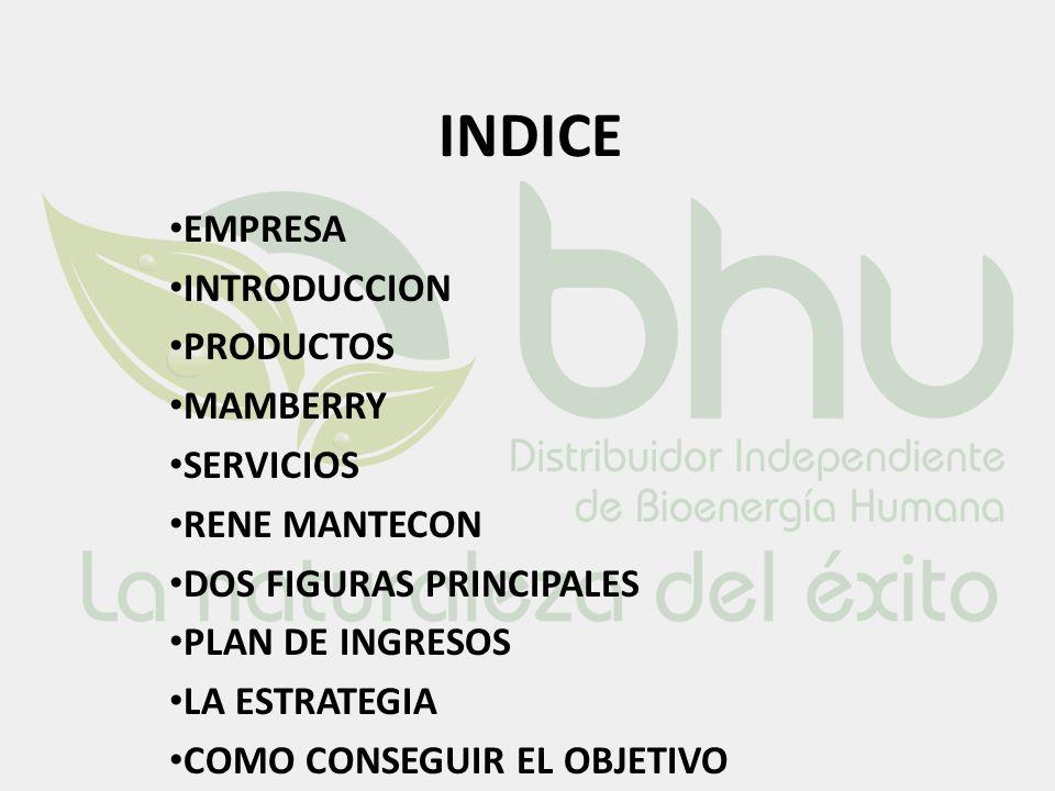 INDICE EMPRESA INTRODUCCION PRODUCTOS MAMBERRY SERVICIOS RENE MANTECON DOS FIGURAS PRINCIPALES PLAN DE INGRESOS LA ESTRATEGIA COMO CONSEGUIR EL OBJETI