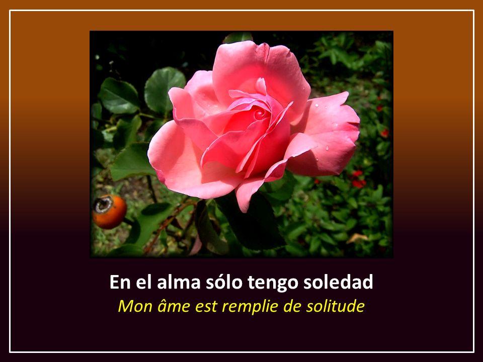 En el alma sólo tengo soledad Mon âme est remplie de solitude