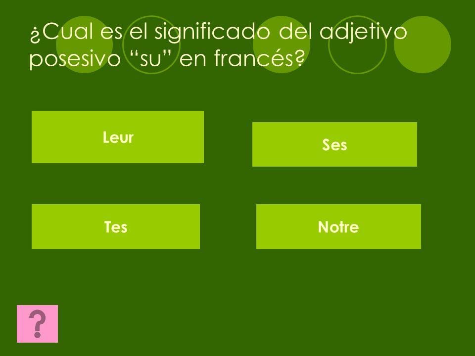 ¿Cual es el adjetivo posesivo en francés del femenino plural? Mes SesTes Nos