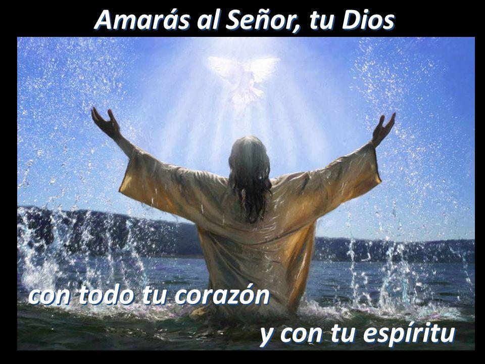 Amando a todos Amando a todos Porque somos el reflejo del amor de Dios Porque somos el reflejo del amor de Dios